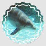 Common Dolphin Stickers