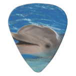 Cute Chattering Dolphin Guitar Pick