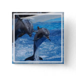 Dolphin Jumping  Button