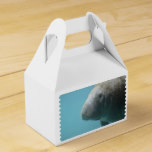 Large Manatee Underwater Favor Box