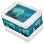 Manatee Photo Drink Cooler