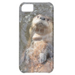 Otter Back Float iPhone 5C Cover