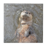 Otter Back Float Tile