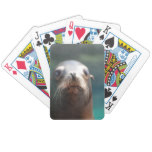 Sea Lion with Whiskers Bicycle Playing Cards