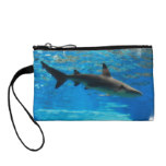 shark-54.jpg change purse