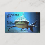 Shark Business Card