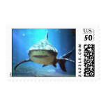 Shark Postage Stamp